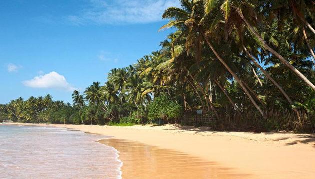 Идиллический_тропический_рай,_Шри_Ланка