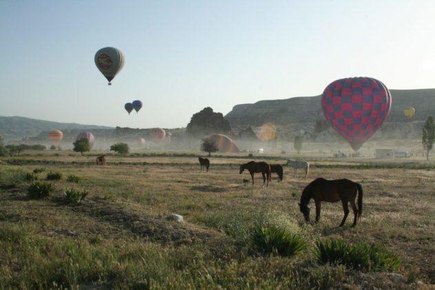balloon-2596329_1920